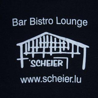 Thumb tscheier logo320